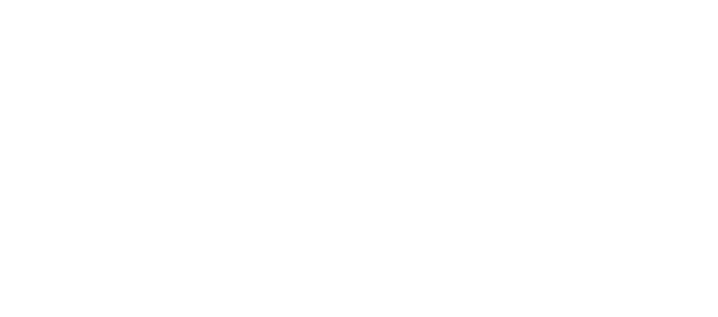 Vendita e assistenza sistemi HiFi professionali